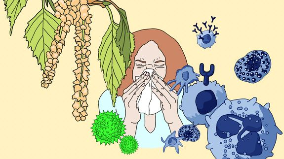 Allergies: when the immune system backfires